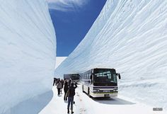 Snow wall in Toyama Prefecture near Tateyama. This highway is one way only during winter so pedestrians can wander freely in the second lane.