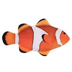Image result for real tropical fish