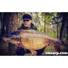 Another stunning photo from @timvanderbiest . Great common and an even better photo. Tims photographer had some skills. Thanks for sharing via the #oncarp hashtag. Make sure you visit oncarp.com #carpfishing #fishing #angling #carp #carplife #carpangler #carpangling