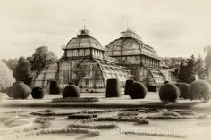 Palm House Schönbrunn Vienna Monochrome photography by gerhards, Monochrome Photography, Fine Art Photography, Vienna, Photos For Sale, Taj Mahal, Etsy, Canvas Prints, House Styles, Artwork