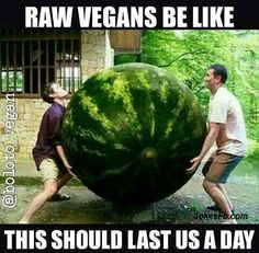 Vegan Humor #raw vegan Come Like us on facebook.com/yummspiration to stay in the vegan loop! Laughter is the healthiest activity you can do!