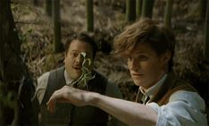 """Bowtruckle/Tronquilho - Fantastic Beasts And Where To Find Them At Comic-Con Eddie Redmayne choose a Bowtruckle he calls """"Picket"""" as his favourite beast in the film inspired by Fantastic Beasts and Where to Find Them Harry Potter Films, Harry Potter World, New Trailers, Movie Trailers, Trailer 2, Goblin, The Future Movie, Eddie Redmayne, Fantastic Beasts And Where"""