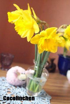 Cocolinchen : Frühlingsblumen fürs Wochenende