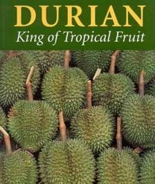 Facts >>> http://rawfooddietsecrets.com/blog/09/durian-trivia-14-fascinating-facts-about-the-worlds-smelliest-fruit/