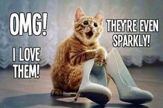 truth bout all sparkly shoes I see.....especially when my kitty used to do this