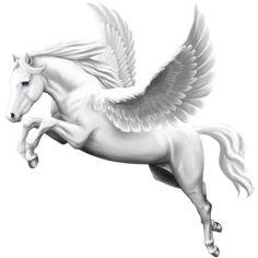 White Angel, Pegasus Thoroughbred Light Gray #45902570 - Howrse