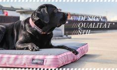 Hundekissen / Cushion URBAN DOGS von www.canvasco-dog.de /// Labrador /// Design