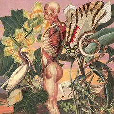 """Juan Gatti. Ciencias Naturales. Del 16 de Septiembre al 21 de Octubre de 2011 LA FRESH GALLERY - C/Conde de Aranda, 5 - MADRIDTel: 914315151Exposición """"CIENCIAS NATURALES"""", de JUAN GATTI"""