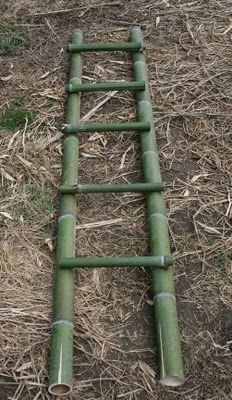 DIY Bamboo Ladder – what to do with my extra bamboo! DIY Bamboo Ladder – what to do with my extra bamboo! Diy Bamboo, Bamboo Art, Bamboo Crafts, Bamboo Ideas, Bamboo Fence, Ladder Towel Racks, Bamboo Ladders, Diy Fidget Spinner, Bois Diy