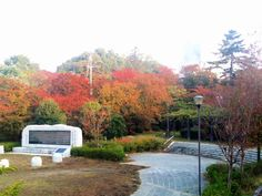2011 Autumn