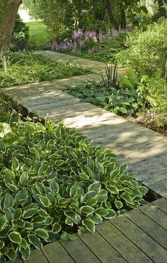 Interesting walkway design through a shade garden. Interesting walkway design through a shade garden Bog Garden, Shade Garden, Dream Garden, Garden Paths, Back Gardens, Small Gardens, Outdoor Gardens, Landscape Design, Garden Design