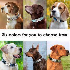 Dog Collar Personalised Nylon Cat Dog Collar Custom Cat Nameplate ID Collars Adjustable For Medium Large Dogs Custom Dog Collars, Personalized Dog Collars, Dog Collars & Leashes, Puppy Collars, Personalized Items, Bobby, Dog Collar Tags, Dog Diapers, Large Animals