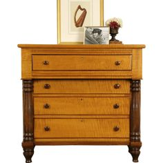 American Empire solid tiger curly grain maple chest or dresser has contrasting walnut columns and knobs.