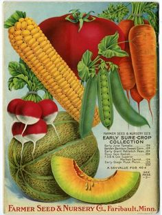 In 1918, the country was at war, and people were encouraged to grow food as part of the war effort.  The back cover of the Farmer Seed & Nursery catalog for that year offered a beautiful, colorful image of a mouth-watering fruit and vegetable collection.  Farmer Seed & Nursery originated in Faribault, MN in 1888. Andersen Horticultural Library hosts a collection of vintage Farmer Seed & Nursery catalogs.
