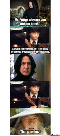 Yep. This has the sass Harry did in the darn book. But what happened to the sass in the movies???