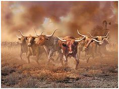 Western Images LTD specializes in selling western art prints for your home. Beautiful western limited editions, open editions, rugs, bits and spurs and books. Longhorn Rind, Longhorn Cattle, Longhorn Steer, Gado, Barn Wood Frames, Framed Art, Picture Frames, Westerns, Moose Art
