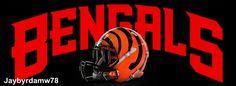 Cincinnati Bengals Who-Dey football picture  jaybyrdamw78  images