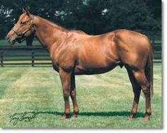 Lucky Lionel(1993)(Colt) Mt Livermore- Crafty Nan By Crafty Prospector. 4(F)x5(F) To Raise A Native. 21 Starts 4 Wins 2 Seconds 2 Thirds. $208,568. Won Prix Robert Papin S(Fr-2), Norfolk S(Eng-3).