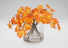 Orange Orchids in Glass Cylinder