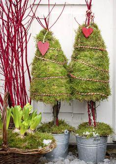 Ripusta havukranssi oveen ja aseta joulupuut ja -kukat portaalle. Ehkä tänä jouluna teet oman sammalpuun? Lue inspiroivat vinkit Viherpihasta ja kokeile!