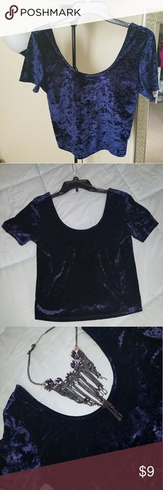 Velvet cute top Beautiful color, great to match with a skirt or jeans. Excelent condition Tops Crop Tops