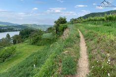 Wachau: Welterbesteig Etappe 1 – von Krems nach Dürnstein Country Roads, Ruins, Hiking, World