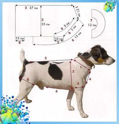 We take measurements from a dog - Dog Clothes - Nadine - Hunde - Dogs Dog Coat Pattern, Dog Clothes Patterns, Dog Jacket, Dog Wear, Dog Sweaters, Dog Costumes, Dog Coats, Pet Clothes, Dog Clothing