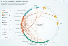 Circular - interconnectivity information design http://infosthetics.com/archives/2014/08/the_many_factors_influencing_breast_cancer_incidence.html