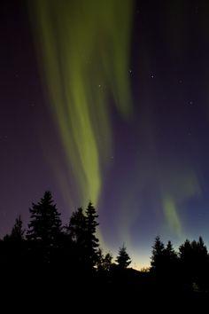 Auroras Boreales en Alaska.-