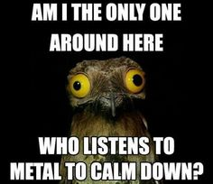 No, the night before E.O.G's and E.O.C's and I'm listening to avenged sevenfold, asking Alexandria, metallica and more. *starts metal screaming the next line* I'M SO CALM!!!!!!! But seriously it helps. TRU STORY