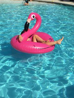 Pink flamingo anyone?