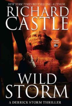 Wild Storm (Hardcover) there cannot really be a Richard Castle, can there???
