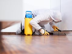 We provides Guaranteed, fast and discreet treatments for termites, cockroaches, bed bugs and more pest control services . Get nearby pest control services for residential and commercial customers in . Best Pest Control, Pest Control Services, Fumigation Services, Bed Bug Control, Rat Control, Mosquito Control, Removal Services, Weed Control, Sharjah