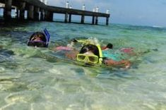 Snorkelling in Grand Cayman - Cayman's Best Snorkelling Sites