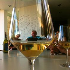 wine tastings and wine tours in Marche, Italy. Passerina, Pecorino, Verdicchio, Trebbiano, Lacrima di Morro d'Alba, Rosso Piceno, Vernaccia di Serrapetrona, Rosso Conero.