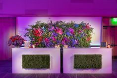 Alice in Wonderland Corporate Holiday Party — Wild Sky Events: Event Production Agency