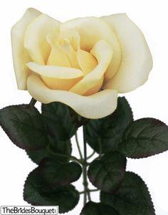 TheBridesBouquet.com - Butter Yellow Rose Stem - Silk Rose Yellow - Wedding Flowers, $1.99 (http://www.thebridesbouquet.com/butter-yellow-rose-stem-silk-rose-yellow-wedding-flowers/)