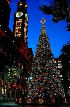 Christmas-don't know where this is but it is pretty. :)