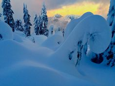 Snow Koru Grouse Mountain Vancouver BC [OC] [3264 x 2448]   landscape Nature Photos