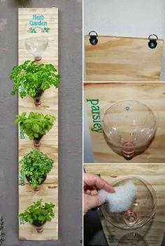 Mini jardín vertical con botellas de pet