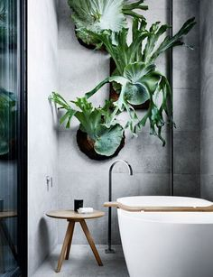 Bathroom Plants ideas - It is common to have ornamental plants in the living room, bedroom, or kitchen. So why is it weird to have plants in the bathroom? Living Wall Planter, Cheap Home Decor, Living Wall Indoor, Bathroom Plants, Bathroom Inspiration, Bathroom Decor, Interior, Planter Design, House Interior