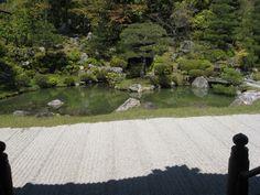 仁和寺の庭。