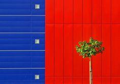 Obstination by Jure Kravanja
