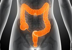 Según los expertos, la mayoría de los trastornos de salud, se dan por tener un colon tóxico . ¿Porqué? Simplemente por que la...