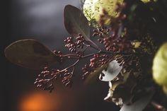 Hochzeitsinspiration, Black Wedding Color, Weddingdress, Hochzeitsfotografie Doreen Kühr Plant Leaves, Blog, Fruit, Plants, Wedding Photography, Blogging, Plant, Planets