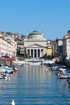 I double looked when i saw this pic, realizing i once lived there and walked those streets <3 Trieste, province of Trieste , Friuli Venezia Giulia, Italy.