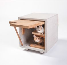 Cat Cube By Standard Architecture - Inspired Outdoor Cat Shelters by Architects for Animals