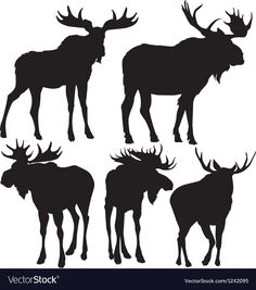 Find Moose Vector Silhouette stock images in HD and millions of other royalty-free stock photos, illustrations and vectors in the Shutterstock collection. Thousands of new, high-quality pictures added every day. Moose Silhouette, Animal Silhouette, Silhouette Machine, Silhouette Vector, Moose Decor, Moose Art, Moose Antlers, Moose Animal, Shilouette Cameo