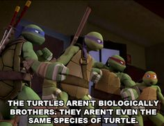 Actually raph and leo are biological brothers
