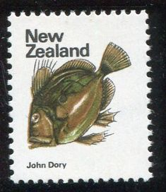 NZ Error 1970 Picts 8c John Dory Fish, unh single with background colour omitted blue green, fish out of water error, one of New Zealand's key errors, ex Parkinson #Stamps #Airmail #MADonC